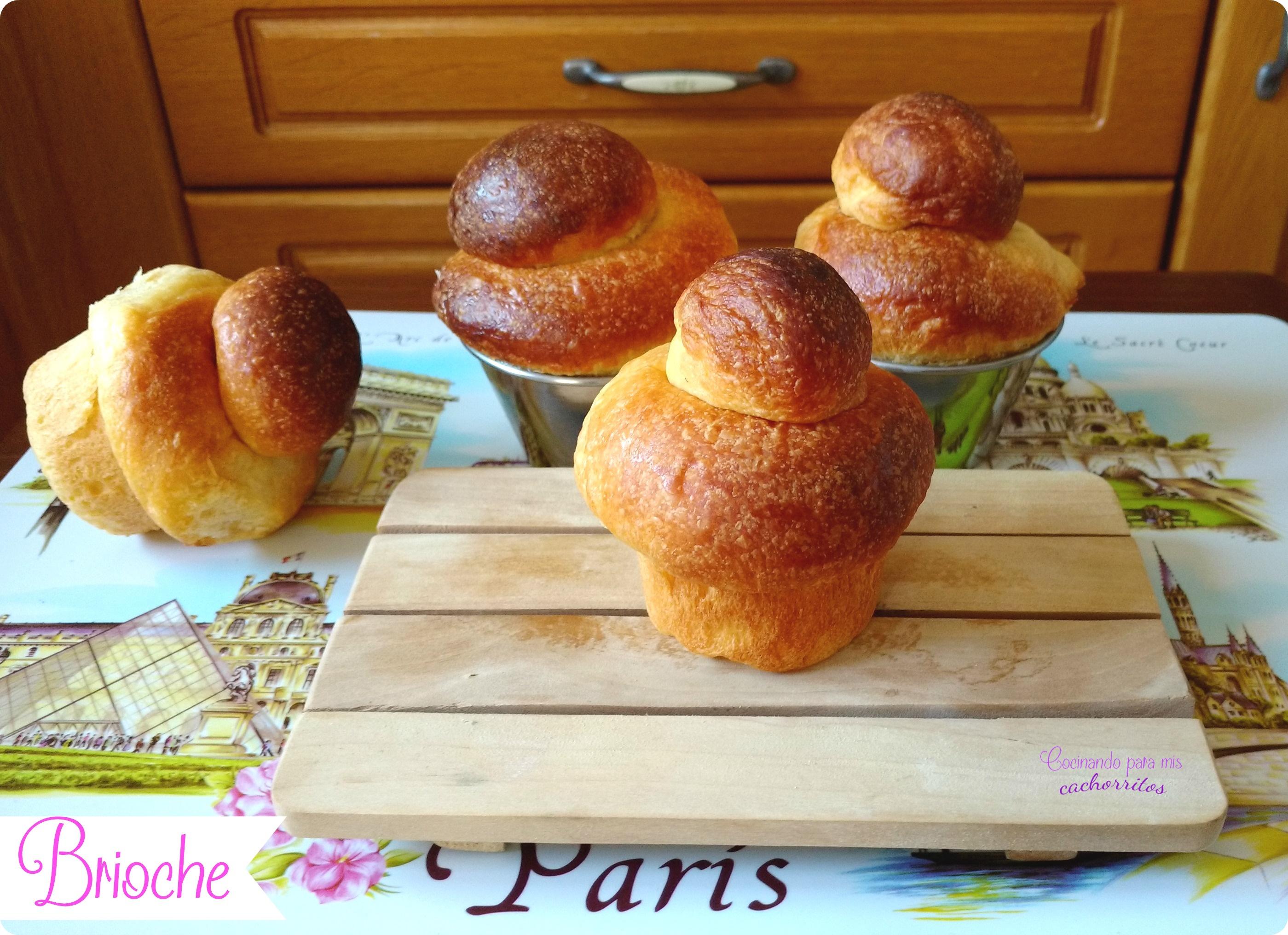 Brioche franc s comidas del mundo receta de brioche for Gastronomia de paris francia