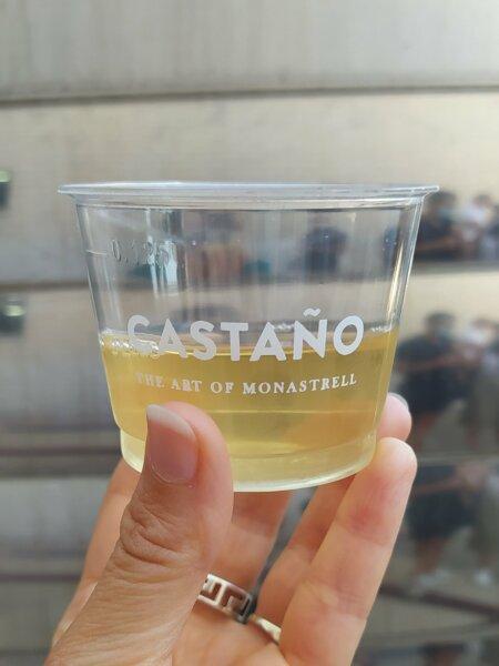 Bodegas Castaño-Mosto